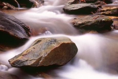 stream rock_in_stream_0319_600x400